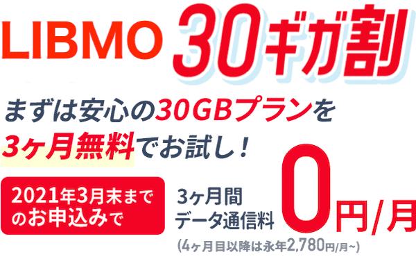 LIBMOの30ギガ割で30GBプラン