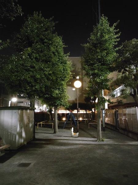 OPPO Reno5 Aのメインカメラの夜景の写真