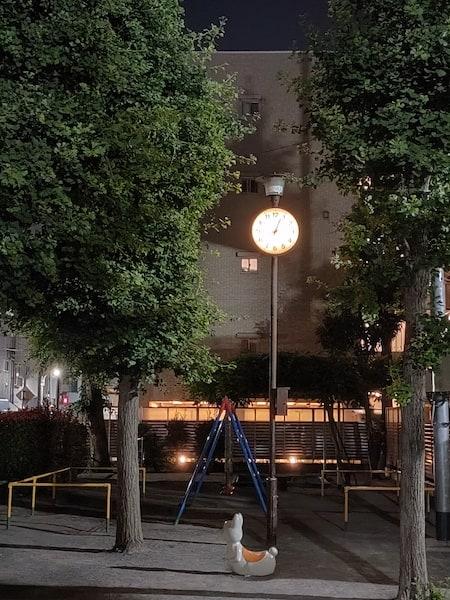 OPPO Reno5 Aのメインカメラの夜景モードの2倍ズーム写真